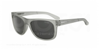 Arnette AN4206 225287 FUZZY TRASLUCENT GREY