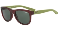 Arnette AN4222 241871 MATTE TRANSPARENT BORDEAUX