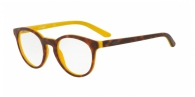 Arnette AN7110 1190 MATTE HAVANA TOP ON YELLOW