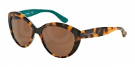 Dolce & Gabbana DG4239 289173 TOP HAVANA ON PETROLEUM BROWN