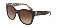DOLCE & GABBANA DG4270 317813 HAVANA ON NEW MAIOLICA