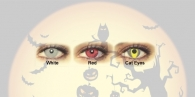 Halloween Lens WHITE EYES