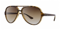 Ray-ban RB4125 CATS 5000 710/51