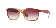 RAY-BAN Andy RB4202 63698H GRAD BORD ON RUBBER LT PINK TR