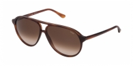 LOZZA SL4204M 0710 SHINY BROWN HAVANA